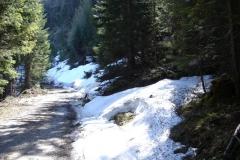 bergwandern_7